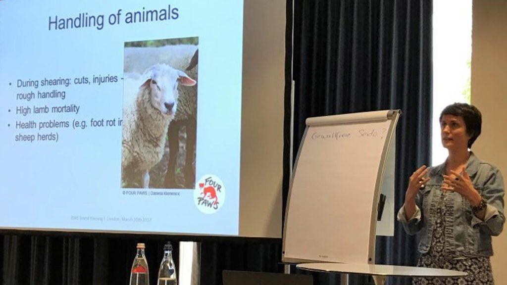 Nachbericht Infotag Textil und Tierschutz Vortrag 5