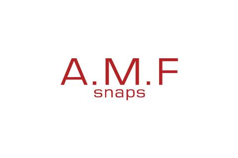 A.M.F. spa